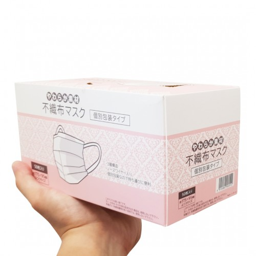 3 Ply Protective Face Mask (50/Bx)