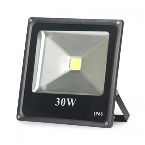 30W Multicolor LED Flood Light