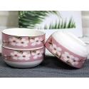Japanese Ceramic Elementary 4 Pcs Dishware Set【花语 - 红】