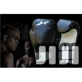 NEW PROFESSIONAL BOXING GLOVE (SD324)